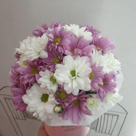 Букет Бело-розовые ромашки