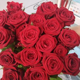 Российская роза поштучно (4 цвета)